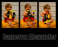 Cameron's First Birthday
