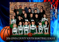 Celtics - Lewis County Basketball 2016