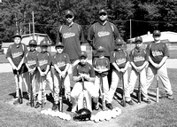 Lewis County Pony Baseball