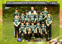 Mannington C-Ball Baseball 2016