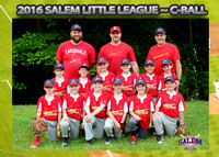 Salem Little League - Cardinals C-Ball