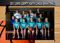 Lewis County Hornets 2016