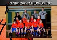 Lewis County Timberwolves 2017