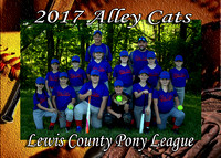 LC Alley Cats 2017