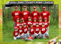LC Reds - 2016