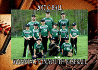 Mannington Baseball 2017