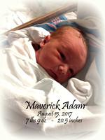 Introducing Maverick Adam