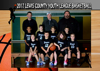Lewis County Stingers 2017