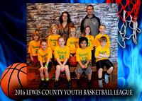 Shamrocks - Lewis County Basketball 2016